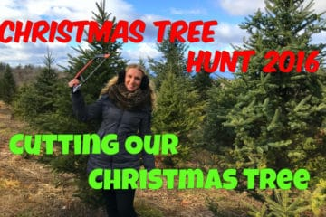 Cutting Down Our Christmas Tree