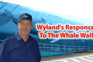 Wyland's Responce To The Whale Wall