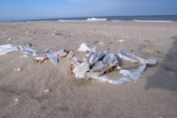 Should The Wildwoods Go Plastic-less?