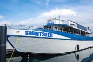 Big Blue Sightseer Found In Chicago